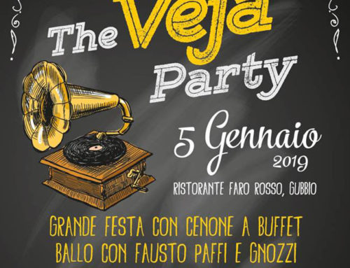 THE VEJA PARTY 2019
